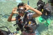 V bazénu často probíhají lekce a nácvik potápění pro studenty angličtiny, Sun Pacific College, Cairns, Austrálie