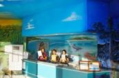 Recepce školy, Sun Pacific College, Cairns Austrálie