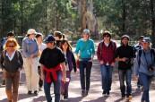 Škola pořádá pro studenty také různé volnočasové aktivity, SACE Adelaide Austrálie